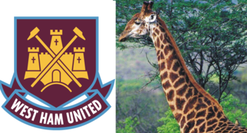 Westhamgiraffe_display_image