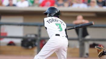Torreyes_display_image