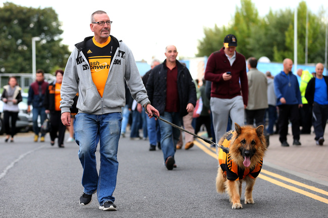 Hi-res-183151403-hull-fan-walks-his-dog-prior-to-kicxkoff-during-the_crop_650