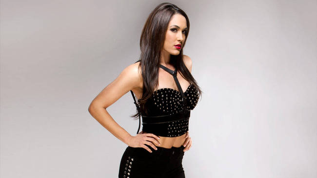 Whose Girlfriend/Fiance Is The Hottest On The Current Roster ... Sheamus Girlfriend 2013
