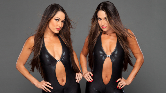 Farewell-to-the-bella-twins-wwe-30687114-1284-722_crop_650