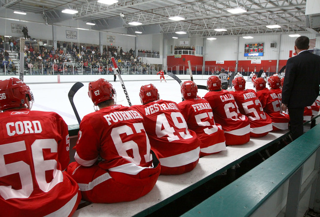 Hi-res-104013301-wide-view-from-behind-the-detroit-red-wings-prospects_crop_650x440