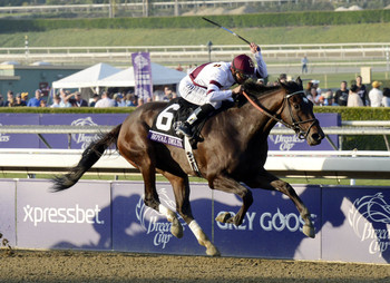 Royal Delta is looking fora three-peat in the Distaff