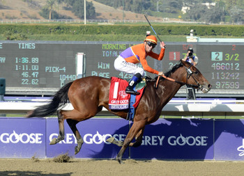 Beholder takes on older in the Distaff.