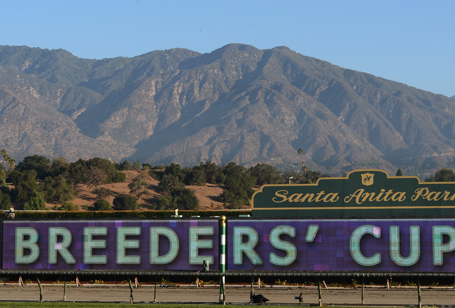 Hi-res-155348378-general-view-of-the-track-during-the-breeders-cup-at_crop_650x440