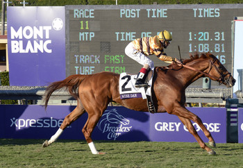 Wise Dan goes for back to back wins in the Mile.