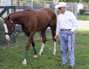 Will Take Charge and D. Wayne Lukas