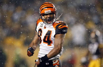 PITTSBURGH - NOVEMBER 20:  T.J. Houshmandzadeh #84 of the Cincinnati Bengals reacts after a play in which he thought he was interfered with during NFL action against the Pittsburgh Steelers on November 20, 2008 at Heinz Field in Pittsburgh, Pennsylvania.