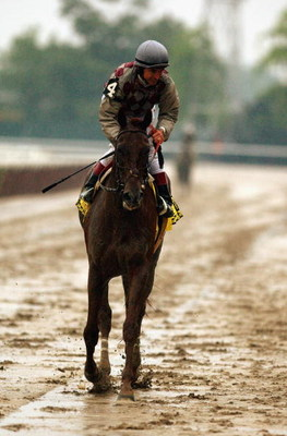 ELMONT, NY - JUNE 7:  Jose Santos rides Funny Cide back to the finish line during the 135th Belmont Stakes at Belmont Park on June 7, 2003 in Elmont, New York.  (Photo by Matthew Stockman/Getty Images)