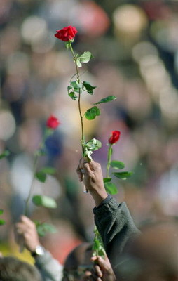 6 Nov 1999: Fans hold up roses during Walter Payton's Memorial Service at Soldier Field in Chicago, Illinois. Mandatory Credit: Jonathan Daniel  /Allsport
