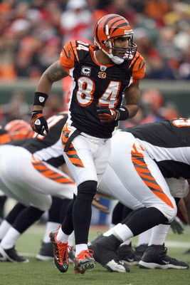 CINCINNATI - DECEMBER 14:  T.J. Houshmandzadeh #84 of the Cincinnati Bengals runs the pattern during the NFL game against the Washington Redskins on December 14, 2008 at Paul Brown Stadium in Cincinnati, Ohio. The Bengals won 20-13. (Photo by Andy Lyons/G