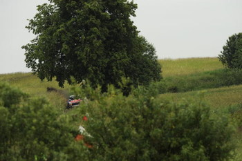 MIKOLAJKI, POLAND - JUNE 27:  Sebastien Loeb of France and Daniel Elena of Monaco compete in their Citroen C 4 Total during the Leg 2 of the WRC Rally of Poland on June 27, 2009 in Mikolajki , Poland.  (Photo by Massimo Bettiol/Getty Images)