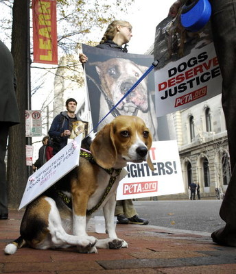 RICHMOND, VA - DECEMBER 10:  Animals rights activists and Frankie the dog wait outside a sentencing hearing for Atlanta Falcons quarterback Michael Vick in federal court December 10, 2007 in Richmond, Virginia. Vick and three associates pleaded guilty to