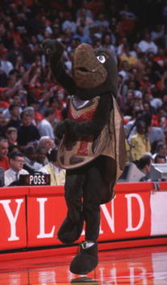 6 Jan 2001:  The University of Maryland mascot entertains the crowd during the game against Georgia Tech at Cole Field House in College Park, Maryland. Mandatory Credit: Doug Pensinger/ALLSPORT