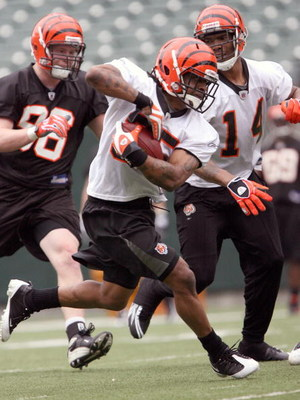 CINCINNATI, OH - MAY 1:  Sixth round draft pick Bernard Scott #35 of the Cincinnati Bengals runs a drill during rookie minicamp at Paul Brown Stadium on May 1, 2009 in Cincinnati, Ohio.  (Photo by Mark Lyons/Getty Images)