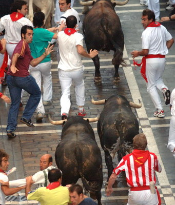 PAMPLONA, SPAIN - JULY 12 : People evade Juan pedro Domecq running bulls on the sixth day of the San Fermin Fiesta on July 12, 2005 in Pamplona. The 'Encierro' or running of the bulls dates back to the 14th century when bulls were herded down the roads in