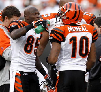 CLEVELAND - NOVEMBER 26:  Chad Johnson #85 of the Cincinnati Bengals gives a drink of water to Reggie McNeal #10 during a fourth quarter timeout after the Cincinatti starters had left the game against Cleveland Browns on November 26, 2006 at Cleveland Bro