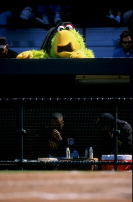 10 Mar 1998:  General view of a mascot during a spring training game between the Pittsburgh Pirates and the Minnesota Twins at the McKechnie Field in Bradenton, Florida. The Pirates defeated the Twins 5-1. Mandatory Credit: Rick Stewart  /Allsport