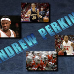 Andrew Perkins