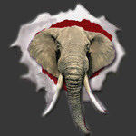 CrimsonTusks.com