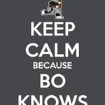 Bo Knows Yo Mamma