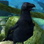 Crow 91
