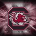 southcarolinafirstusc