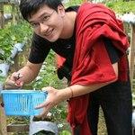 Duc Linh Dao