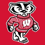 Wisconsin Badgers Fan
