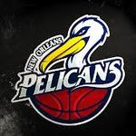 PelicanFan India