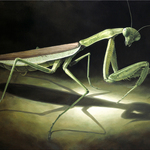 The Mantis