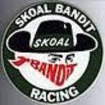 Skoal Bandit 33