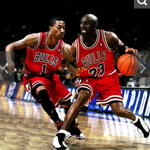 Bulls and Hornets Fan