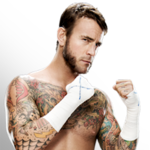 CM PUNK IS THE  BEST IN THE WORLD
