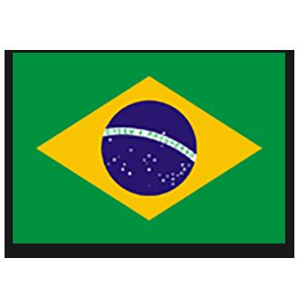 A1 Team Brazil logo