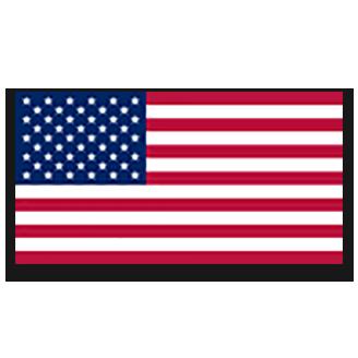 A1 Team USA logo