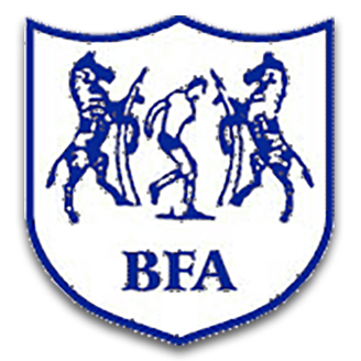 Botswana (National Football) logo