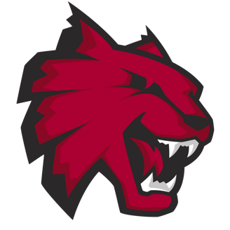 Central Washington Basketball logo