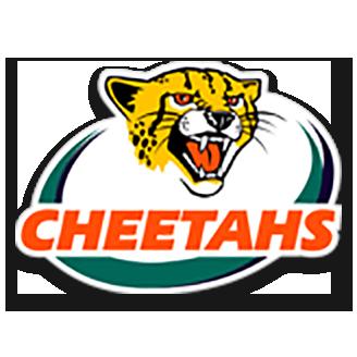 Cheetahs Rugby logo