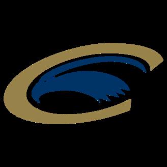 Clarion Basketball logo
