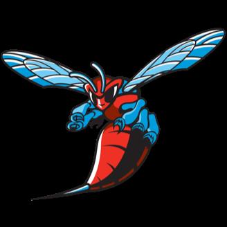 Delaware State Football logo