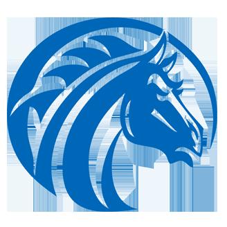 Fayetteville State Basketball logo