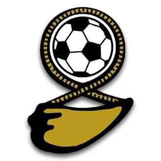 Fiji (National Football) logo