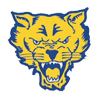 Fort Valley State Basketball logo