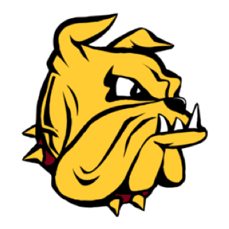 Minnesota-Duluth Football logo