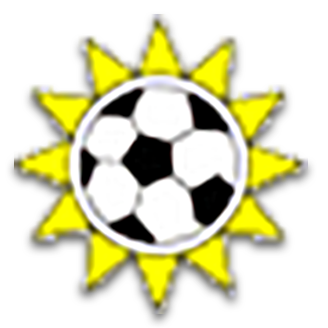 Namibia (National Football) logo