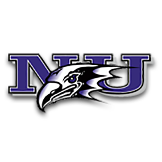 Niagara Basketball logo