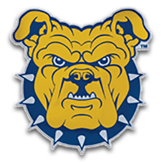 North Carolina A&T Football logo
