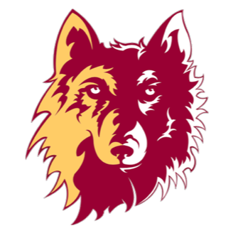 Northern State Football logo