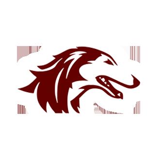 Southern Illinois Basketball logo